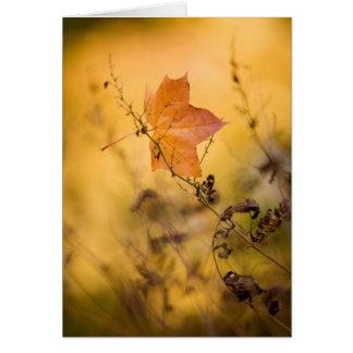 Autumn leaf folded card