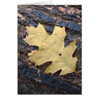 Autumn leaf greeting card