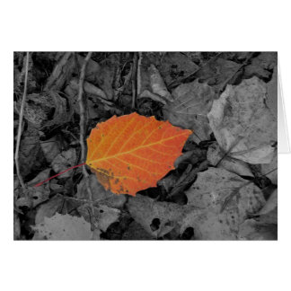 Autumn Leaf Greeting Cards