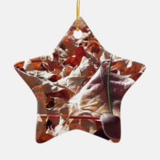 Autumn leaf in the fall ceramic star decoration