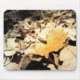Autumn leaf mouse pad