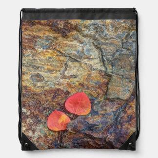 Autumn leaf on rock, California Drawstring Bag