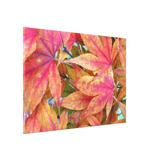 Autumn Leaf Pile Stretched Canvas Prints
