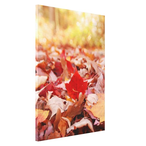 Autumn Leaf Pile Wrapped Canvas Stretched Canvas Print