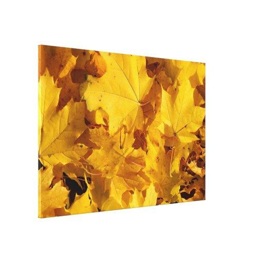 Autumn Leaf Piles Stretched Canvas Prints