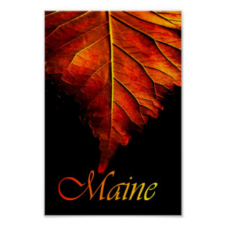 Autumn Leaf Poster | Fall Leaf Poster