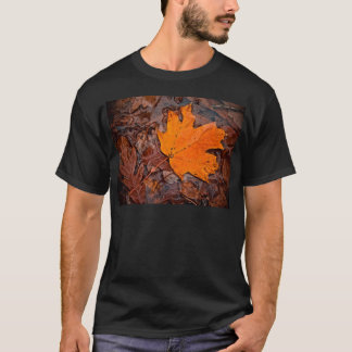 Autumn Leaf T-Shirt