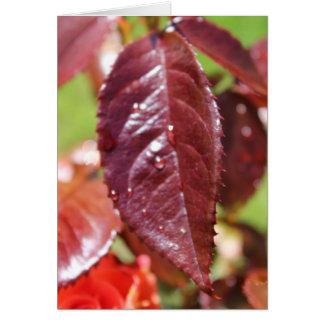 Autumn Leaf Thank You Card
