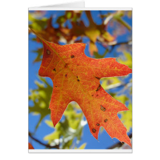 Autumn Leaf Up Close Card