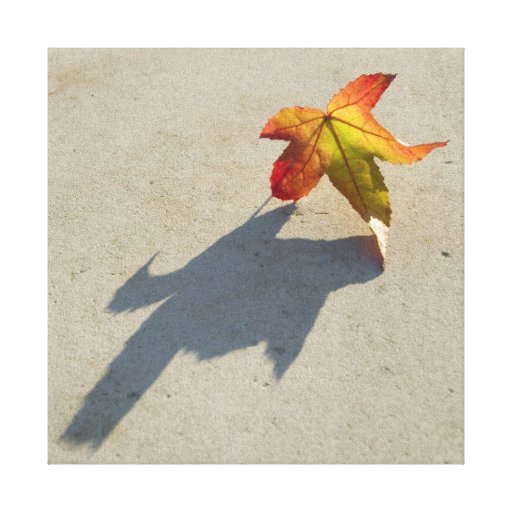 Autumn Leaf with Shadow Stretched Canvas Print