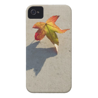 Autumn Leaf with Shadow Case-Mate iPhone 4 Case