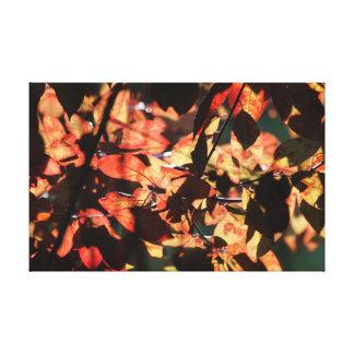 autumn leafes stretched canvas print