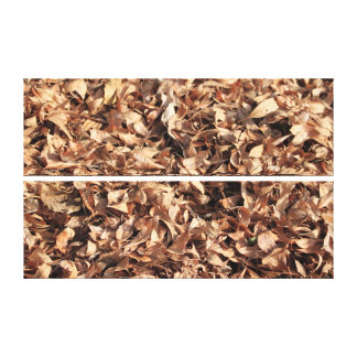 Autumn Leafs Stretched Canvas Prints