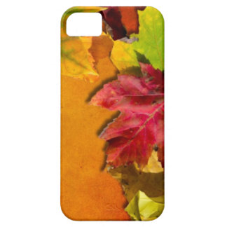 Autumn Leaves 1 iPhone 5 Covers