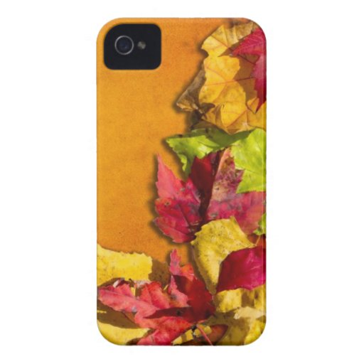 Autumn Leaves 1 iPhone 4 Cover