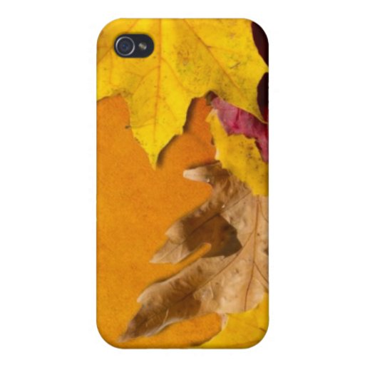 Autumn Leaves 1 Cases For iPhone 4
