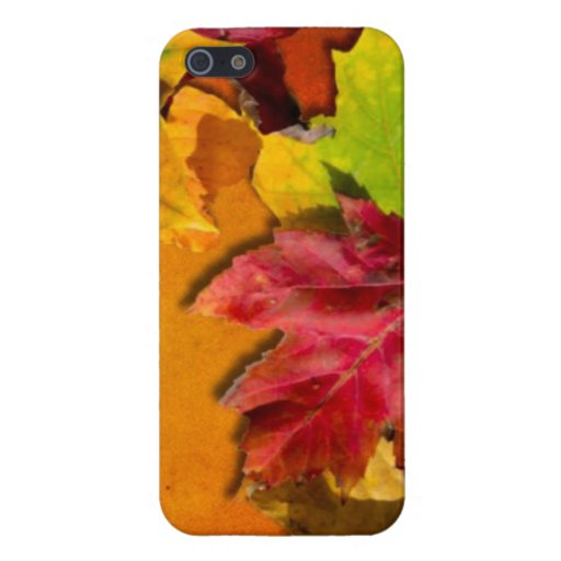 Autumn Leaves 1 Case For iPhone 5/5S
