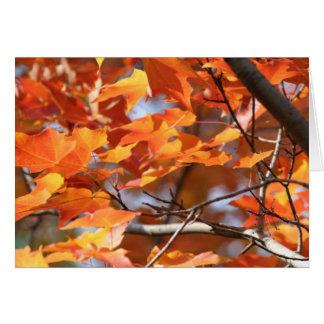 Autumn Leaves 2 Card