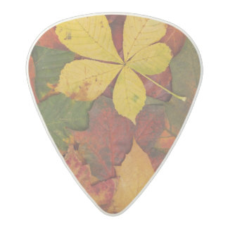 Autumn Leaves Acetal Guitar Pick