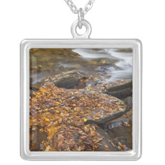 Autumn leaves along Looking Glass Creek in the Square Pendant Necklace