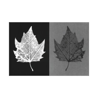 Autumn Leaves Black and White Canvas Canvas Print