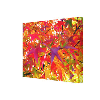 Autumn Leaves Stretched Canvas Print