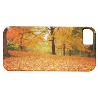 Autumn Leaves - Central Park iPhone 5 Covers