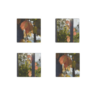Autumn Leaves Collection Stone Magnet