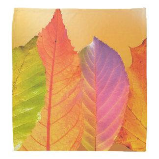 Autumn Leaves Colorful Modern Fine Art Photography Bandana
