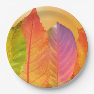 Autumn Leaves Colorful Modern Fine Art Photography Paper Plate