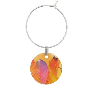 Autumn Leaves Colorful Modern Fine Art Photography Wine Charms