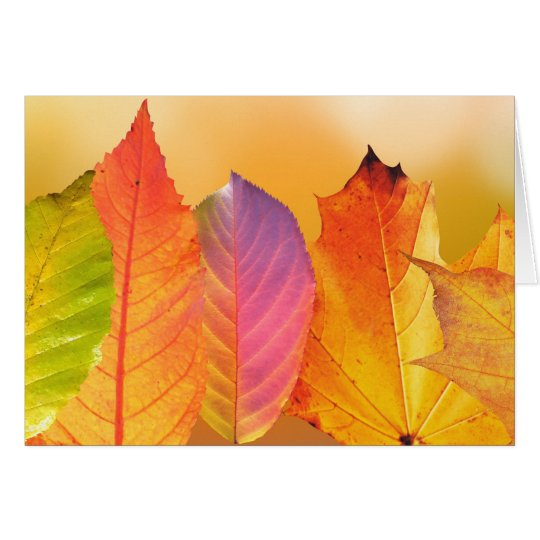 Autumn Leaves Colourful Modern Fine Art Card