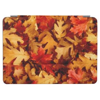 Autumn Leaves - Fall Color iPad Air Cover