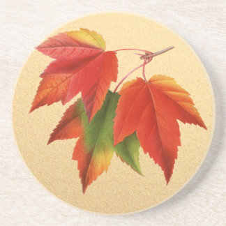 Autumn Leaves Fall Colors Maple Leaf on Gold Coasters