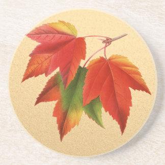 Autumn Leaves Fall Colors Maple Leaf on Gold Coasters