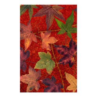 Autumn Leaves Fall Season Tree Leaf Colorful Personalised Stationery