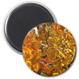 Autumn Leaves Gold Gifts Apparel Collectibles 6 Cm Round Magnet