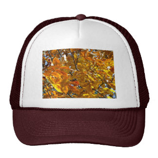 Autumn Leaves Gold Gifts Apparel Collectibles Mesh Hats