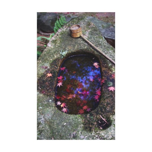 Autumn leaves in Japanese pond Stretched Canvas Print