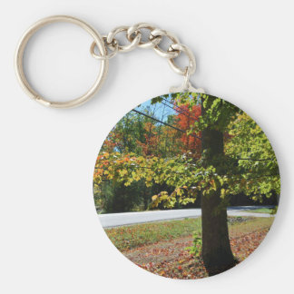 Autumn Leaves in Maine Basic Round Button Key Ring