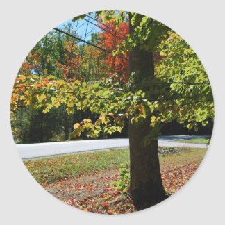 Autumn Leaves in Maine Classic Round Sticker