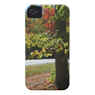Autumn Leaves in Maine iPhone 4 Case