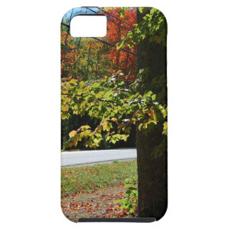 Autumn Leaves in Maine iPhone 5 Case