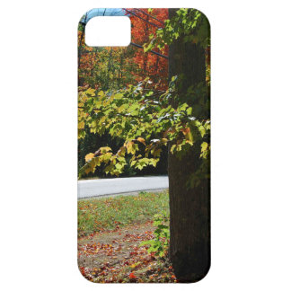 Autumn Leaves in Maine iPhone 5 Cover