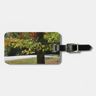 Autumn Leaves in Maine Luggage Tag