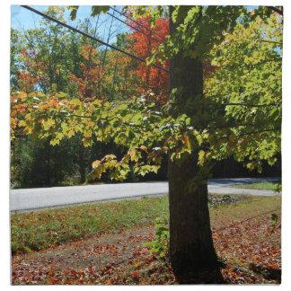 Autumn Leaves in Maine Napkin