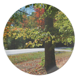 Autumn Leaves in Maine Plate