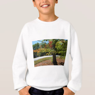 Autumn Leaves in Maine Sweatshirt