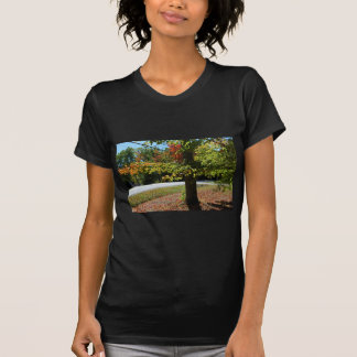 Autumn Leaves in Maine T-Shirt