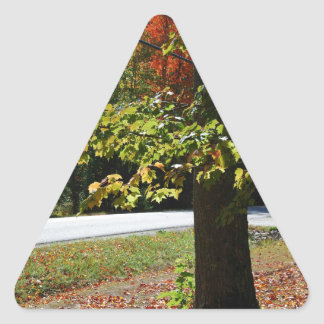 Autumn Leaves in Maine Triangle Sticker
